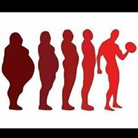 Evolution Fitness and Personal Training
