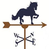 Seneca Wealth Strategies, LLC