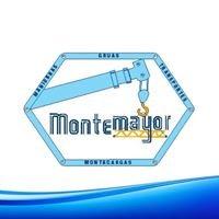 Gruas Montemayor