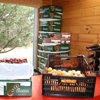 Orani Vineyard and Fruit Farm