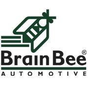 Brain Bee Group