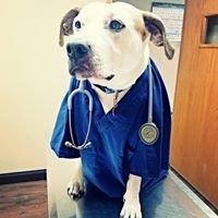 Boone County Veterinary Clinic