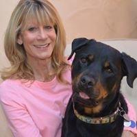 Lynda Gualtier Realtor Berkshire Hathaway Home Services