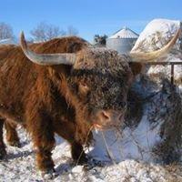 Deardorff Highland Cattle