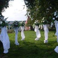 Katarzyna Pietrzyk - dekoracje kwiatowe