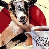 Crazy Mocha, Cranberry