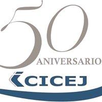 Colegio de Ingenieros Civiles del Estado de Jalisco A.C. - CICEJ