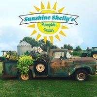 Sunshine Shelly's Pumpkin Patch