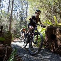 Launceston Mountain Bike Tours