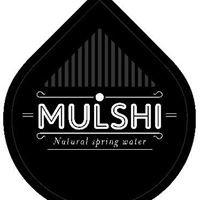 Mulshi Springs