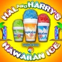 Hal and Harry's Hawaiian Ice