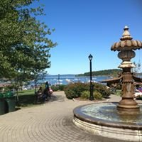 Bar Harbor Whale & Puffin Watch