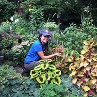 Heidi's timely Garden Tips