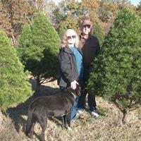 JANDA Bend Christmas Trees