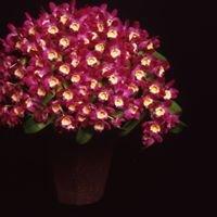 YOG yatou orchid garden