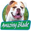 Amazing Blades Landscaping