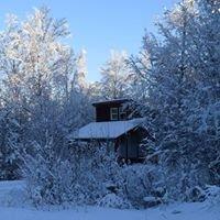 Alaska Birch Cottages