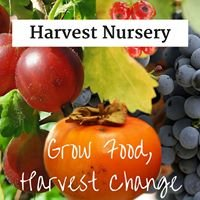 Harvest Nursery