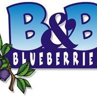 B&B Blueberries