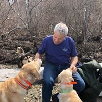 Me and My Dog Training