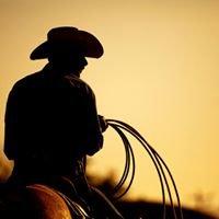Star of Texas RV Park & Horse Hotel