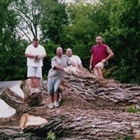 Stupavsky Tree Services