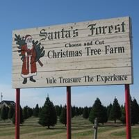 Santa's Forest Tree Farm