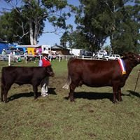 Wauchope Showground