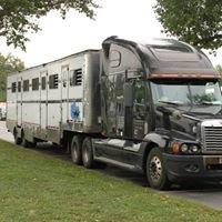Nation-Wide Horse Transportation