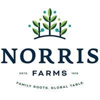Norris Blueberry Farms