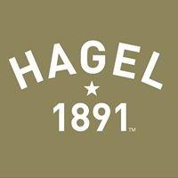 Hagel 1891