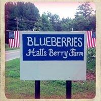 Hall's Berry Farm