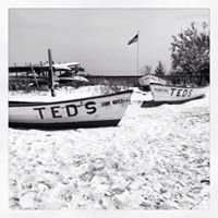 Ted's Fishing Station