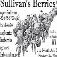 Sullivans Berries