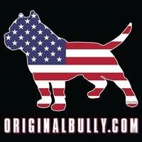www.OriginalBully.com