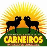 Gestão Carneiros - 2013 a 2016