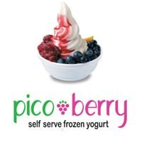 Pico Berry Frozen Yogurt