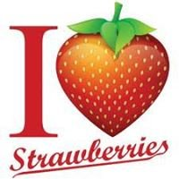 Kirschbaum Strawberry Acres LLC.
