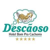 Descãoso Hotel Canino Ltda