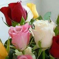 Michiana Wholesale Florist, Inc