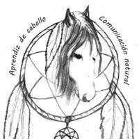 Comunicación Natural Asturias : aprendiz de caballo