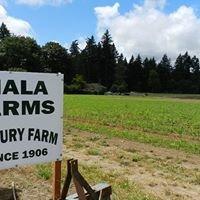 Fiala Farms