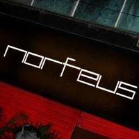 Morfeus Club