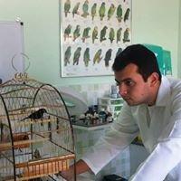 Renan Cevarolli - Assessoria Veterinária