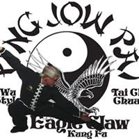 Eagle Claw Kung Fu and Tai Chi