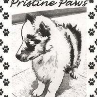 Pristine Paws Academy & Pet Grooming