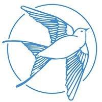 Bluebird Cakery KATO