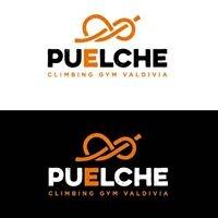 Puelche Climbing Gym Valdivia