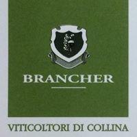 Brancher - Viticoltori Di Collina.