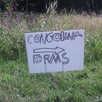 Congolina Farm